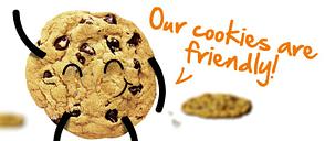 adeguare-il-proprio-sito-o-blog-alla-legge-sui-cookie